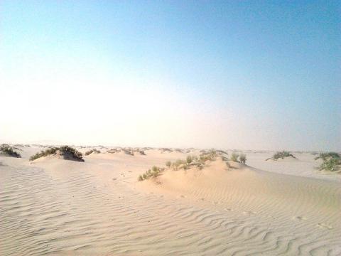 qatar-desierto.jpg